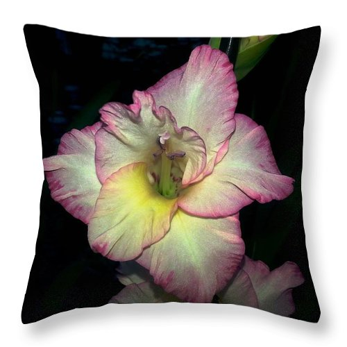 Gladiolus Throw Pillow featuring the photograph Pink Lined Glad by Christine Hirtle