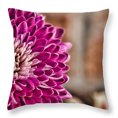 Pink Throw Pillow featuring the photograph Pink Mum by Lana Trussell