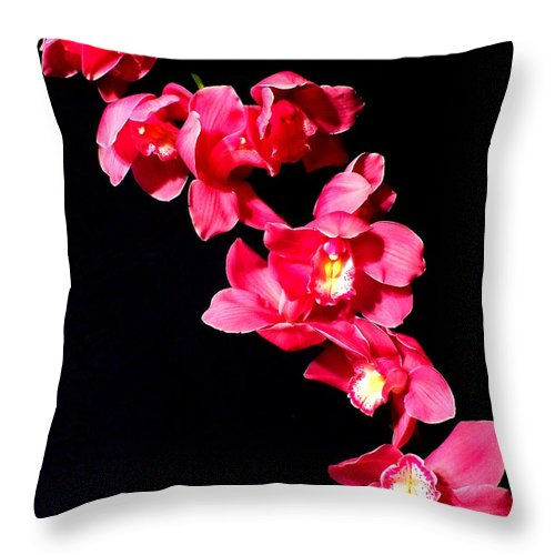 Flower Throw Pillow featuring the photograph Pink Orchid by Guy Pettingell
