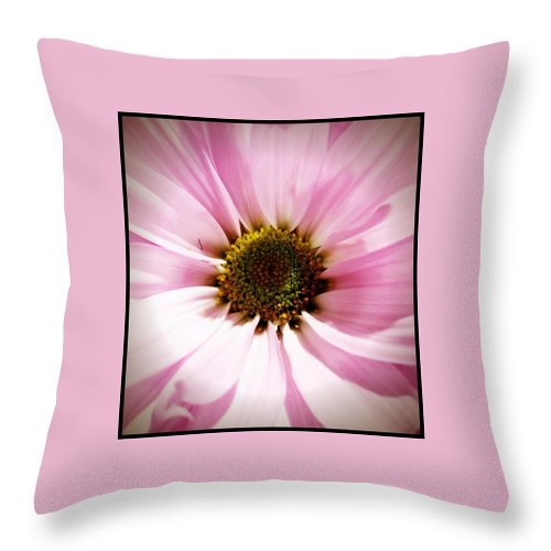 Flower Throw Pillow featuring the photograph Pink Petals by Michele Monk