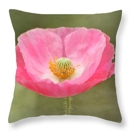 Poppy Throw Pillow featuring the photograph Pink Poppy Flower by Kim Hojnacki