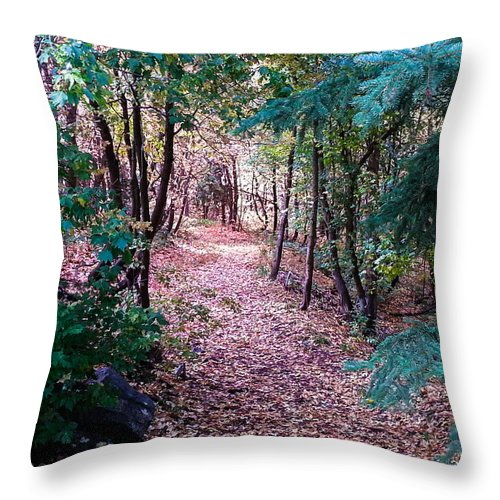 Autumn Throw Pillow featuring the photograph Pink Road by Southwindow Eugenia Rey-Guerra