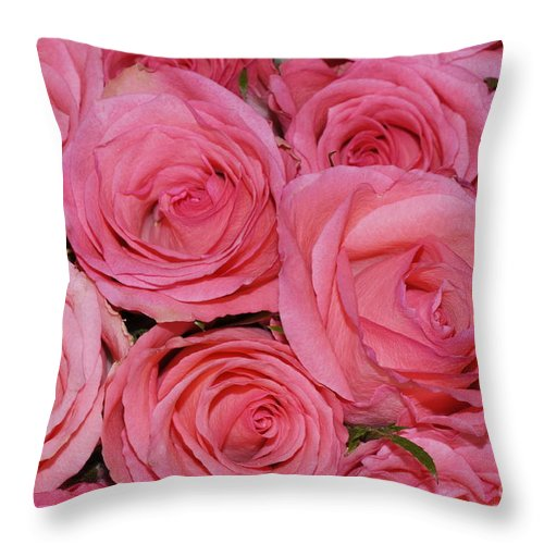 Pink Throw Pillow featuring the photograph Pink Rose Closeup by HHelene