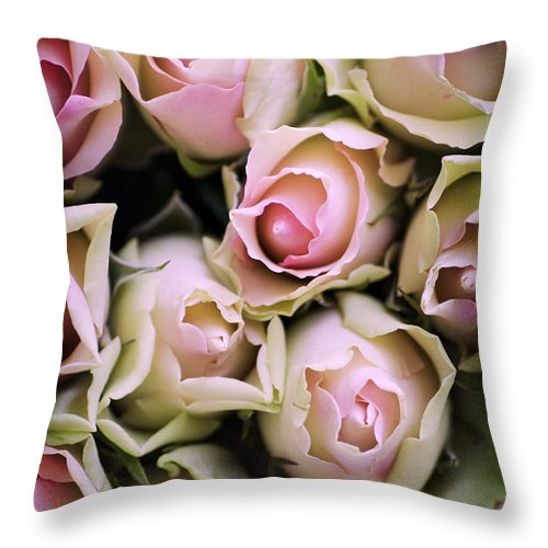 Love Throw Pillow featuring the photograph Pink Roses by David Lichtneker