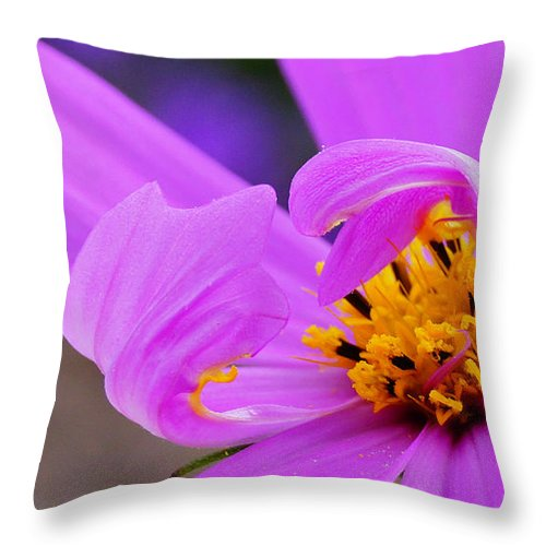 Flower Throw Pillow featuring the photograph Pink Surf by Patrick Moore
