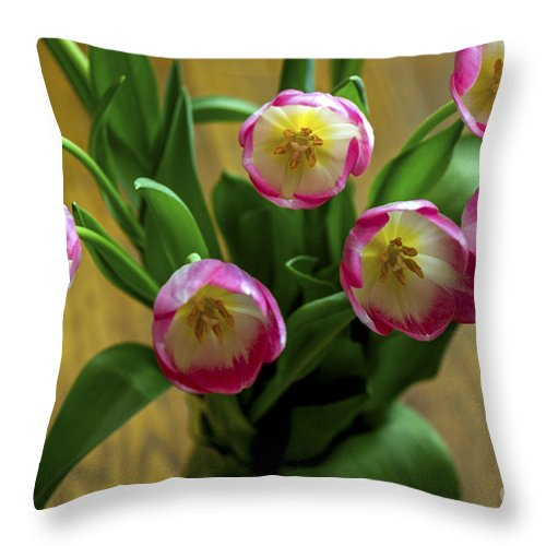 Pink Throw Pillow featuring the photograph Pink Tulips by Calazone's Flics
