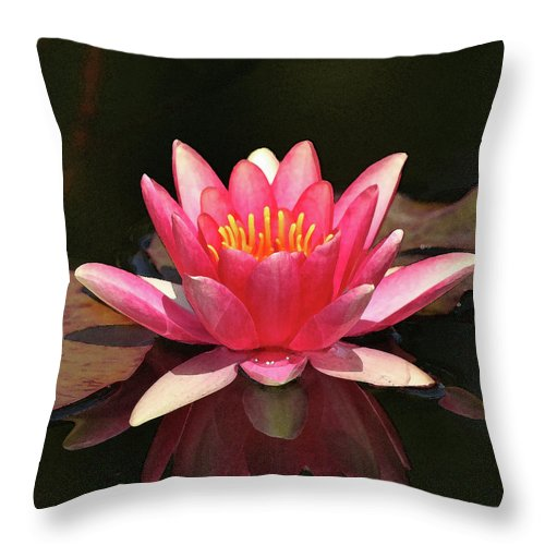 Lily Throw Pillow featuring the photograph Pink Waterlily by Art Block Collections