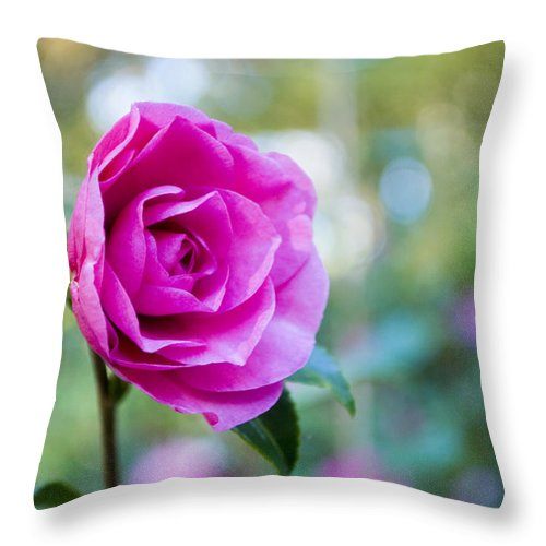 Pink Throw Pillow featuring the photograph Pinky by Breanna Calkins