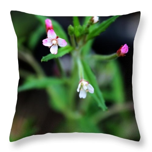 Macro Throw Pillow featuring the photograph Pinky Swear by Brook Steed