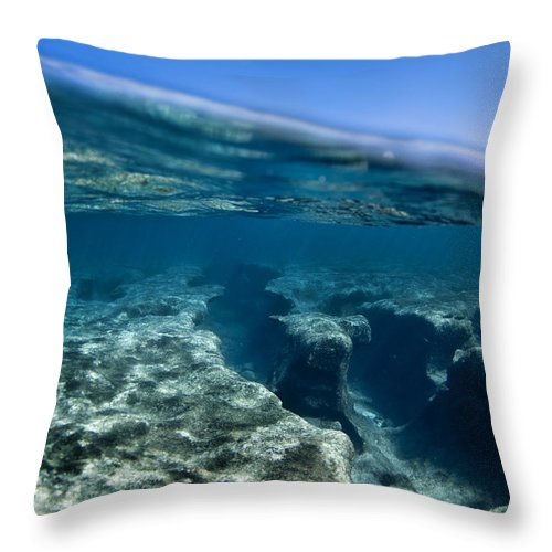 Under Water Throw Pillow featuring the photograph Pipe Reef. by Sean Davey