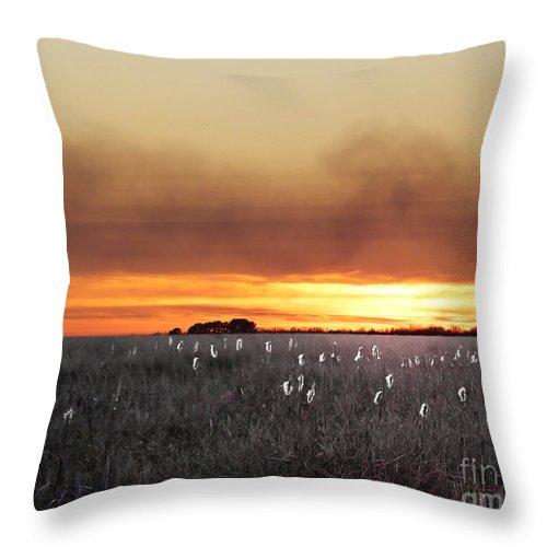 Digital Art Throw Pillow featuring the digital art Plant Rd Lacassine Nwr Louisiana by Lizi Beard-Ward