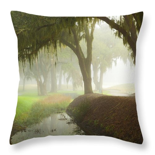 Trees Throw Pillow featuring the photograph Plantation Canal by Barbara Northrup