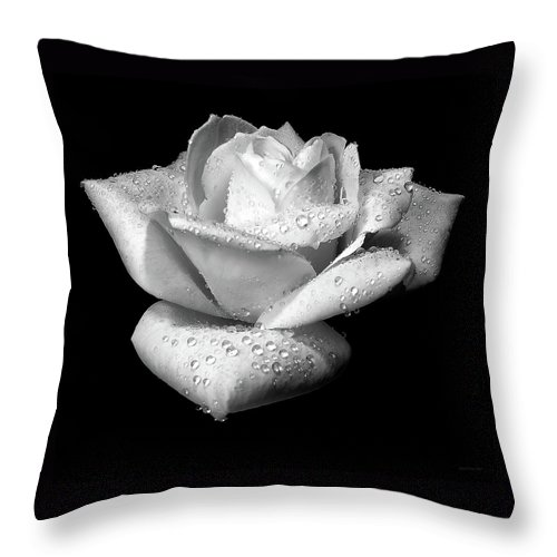 Rose Throw Pillow featuring the photograph Platinum Rose Flower by Jennie Marie Schell