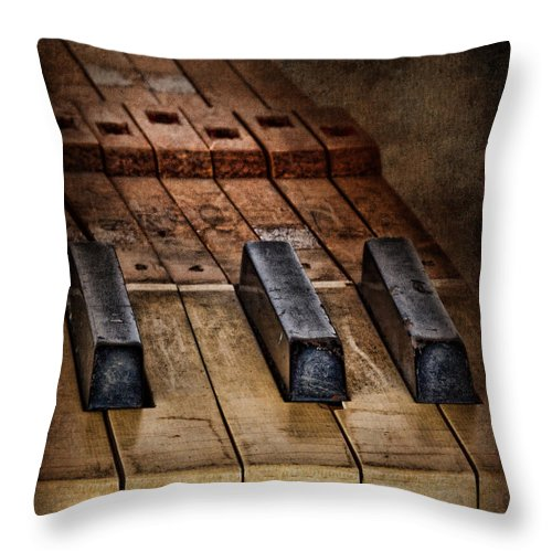 Close Up Throw Pillow featuring the photograph Play Me An Old Hymn by David and Carol Kelly