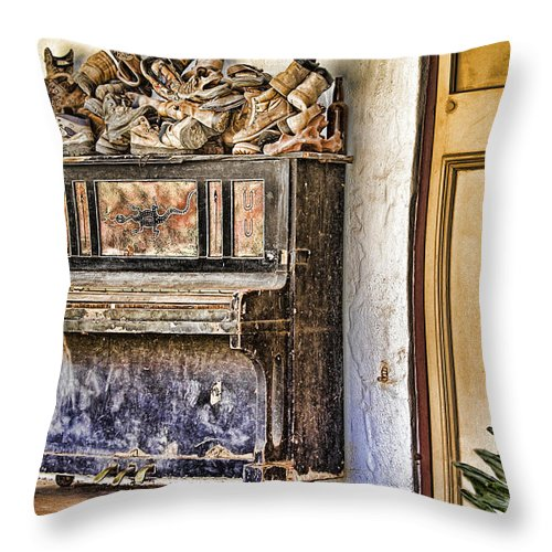Australia Throw Pillow featuring the photograph Play Me V3 by Douglas Barnard