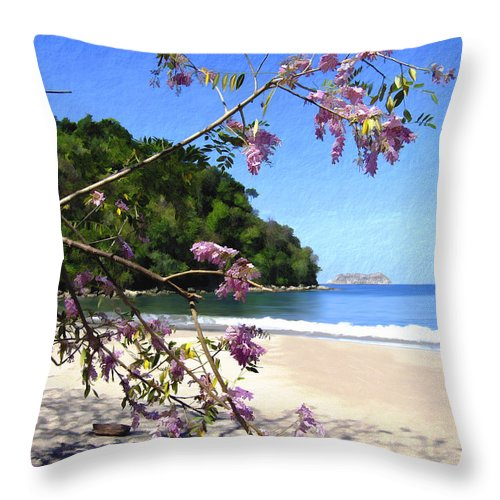 Beach Throw Pillow featuring the photograph Playa Espadillia Sur Manuel Antonio National Park Costa Rica by Kurt Van Wagner