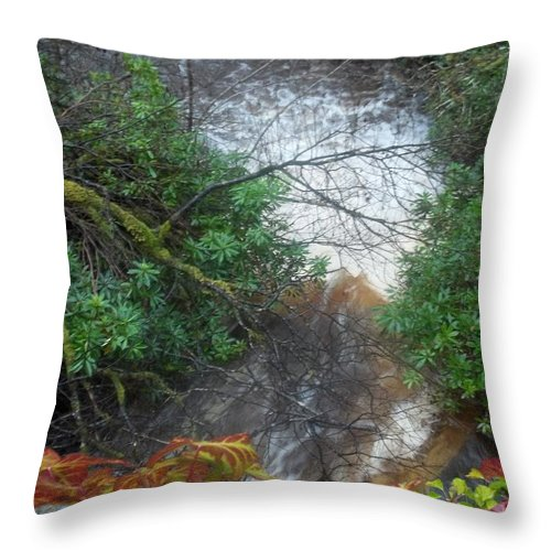 Plodda Throw Pillow featuring the photograph Plodda Burn by James Potts