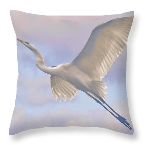 Bird Throw Pillow featuring the photograph Point Me In The Right Direction by Leslie Reagan - Joy To The Wild Photos