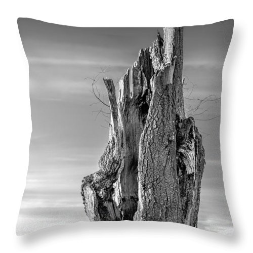 2d Throw Pillow featuring the photograph Pointing To The Heavens - Bw by Brian Wallace