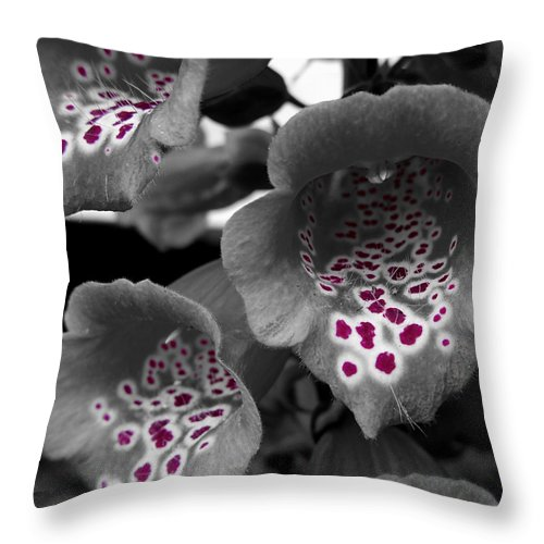 Foxglove Throw Pillow featuring the photograph Poison by Coral Stark