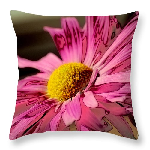 Petal Throw Pillow featuring the photograph Polaroid Pink Daisy by Birgit Tyrrell