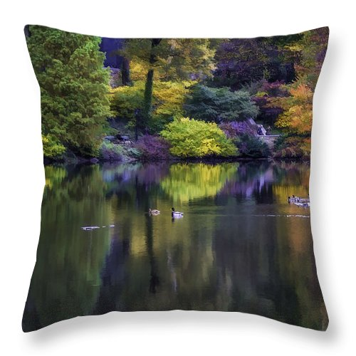 Autumn Throw Pillow featuring the photograph Pond In The Park Oil Paint 2721gop  by Karen Celella