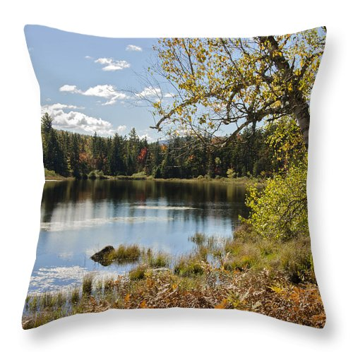Western Maine Throw Pillow featuring the photograph Pond Reflection by Lisa Bryant