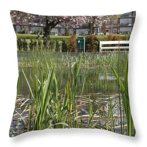 Pond Throw Pillow featuring the photograph Pond With Reed by Ronald Jansen