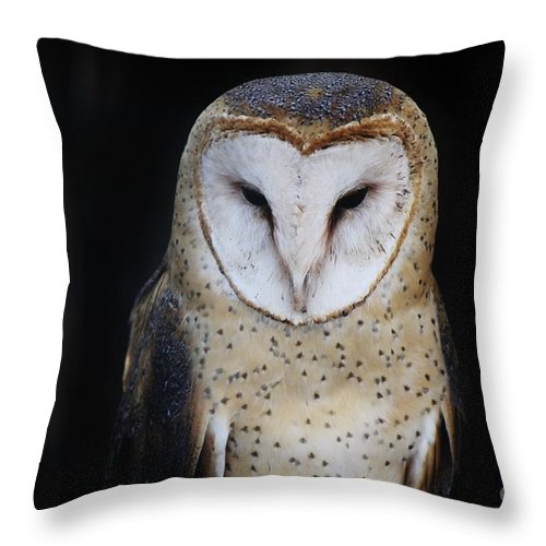 Black Throw Pillow featuring the photograph Ponder by Jessica Shelton