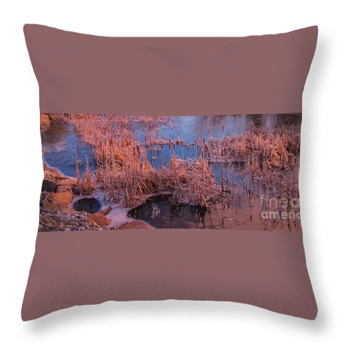 Autumn Landscape Throw Pillow featuring the photograph Ponds Edge by John Malone