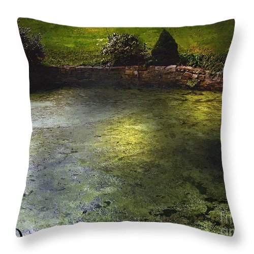 Pond Throw Pillow featuring the painting Pondshine by RC DeWinter