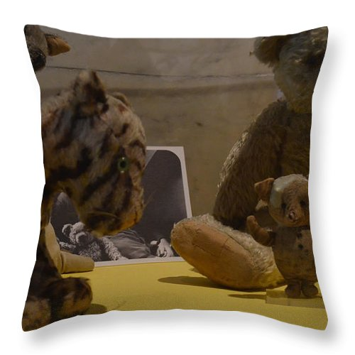 Pooh Throw Pillow featuring the photograph Pooh And Friends by Philip Ralley