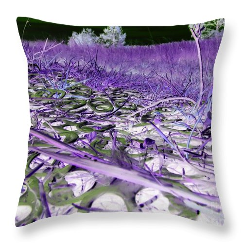 Abstract Throw Pillow featuring the photograph Pop Art a06 by Rrrose Pix