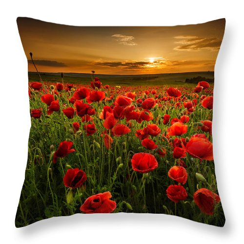 Poppy Throw Pillow featuring the photograph Poppy Field At Sunset by Evgeni Ivanov