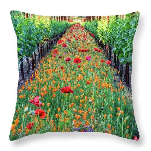 Tranquility Throw Pillow featuring the photograph Poppy Lined Vineyard by Rmb Images / Photography By Robert Bowman