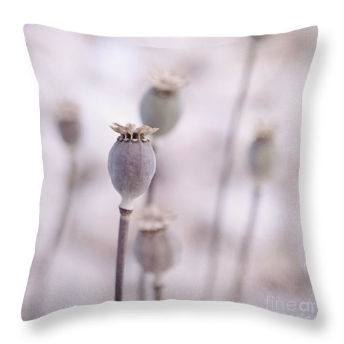 Poppy Throw Pillow featuring the photograph Poppy Queens by Priska Wettstein