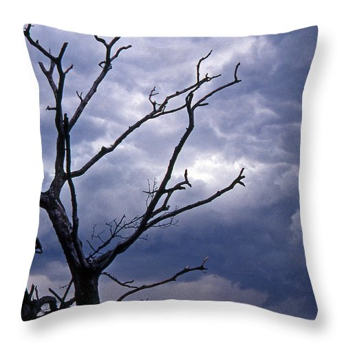 Scenic Tours Throw Pillow featuring the photograph Portending by Skip Willits