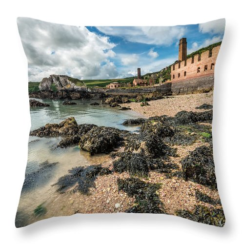 Anglesey Throw Pillow featuring the photograph Porth Wen Brickworks by Adrian Evans