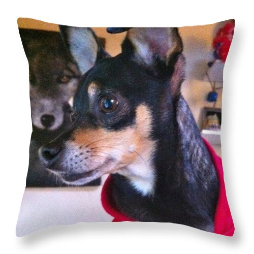 Throw Pillow featuring the photograph Portrait Of A Dog by Aprelle Pierce