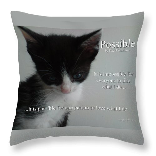 Cat Throw Pillow featuring the photograph Possible by Peter Hutchinson