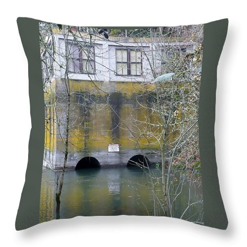 Abandoned Throw Pillow featuring the photograph Power House Station by Susan Garren