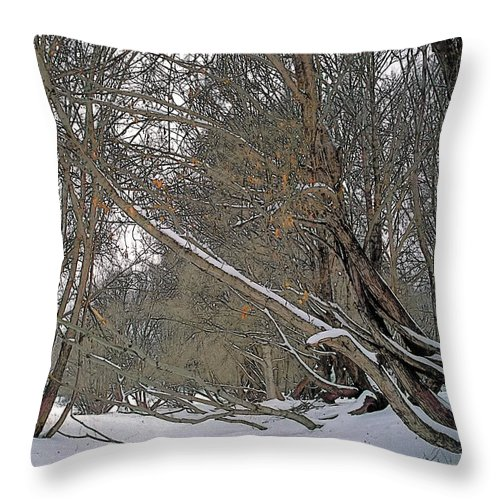 Beautiful Throw Pillow featuring the painting Prairie Winter 2 by Terry Reynoldson