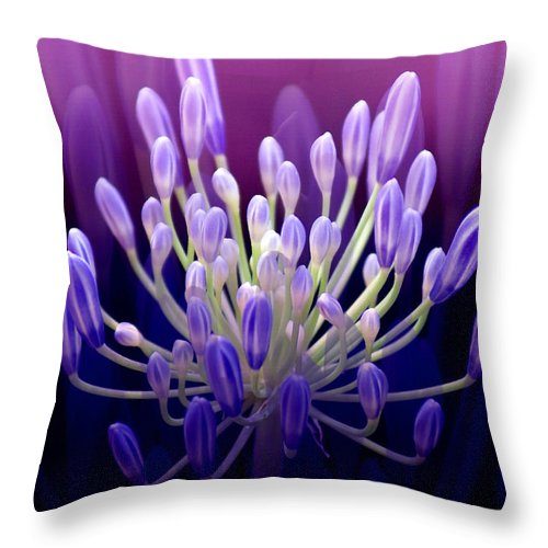Agapanthus Throw Pillow featuring the photograph Praise by Holly Kempe
