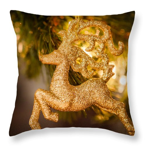 2012 Throw Pillow featuring the photograph Prancer by Melinda Ledsome