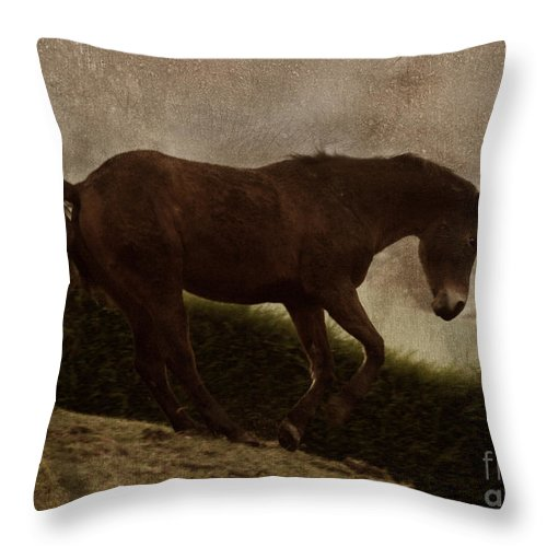 Prancing Horse Throw Pillow featuring the photograph Prancing Horse by Angel Ciesniarska