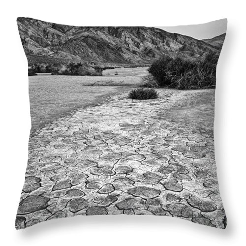 Clark Dry Lake Throw Pillow featuring the photograph Prehistoric - Clark Dry Lake Located In Anza Borrego Desert State Park In California. by Jamie Pham