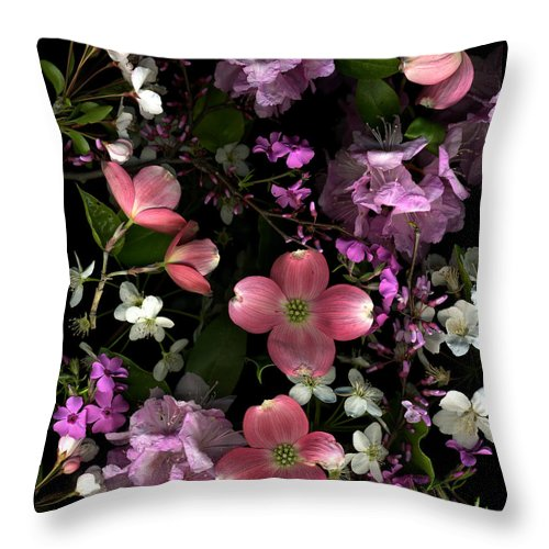 Dogwood Throw Pillow featuring the photograph Pretty In Pink by Dale Hoopingarner