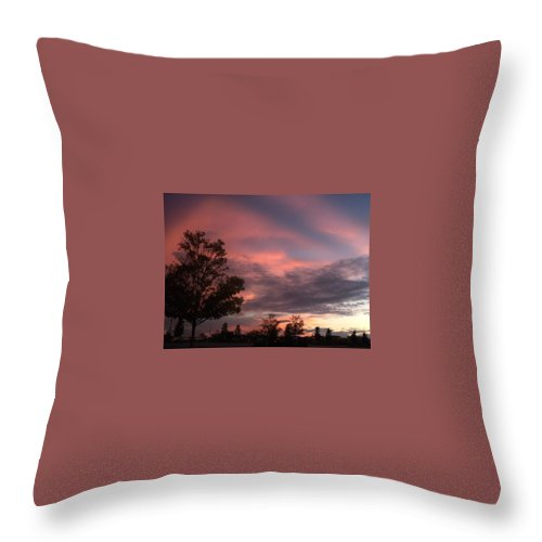 Pink Throw Pillow featuring the photograph Pretty When Pink by Michelle Regan