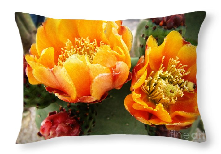 Orange Prickly Pear Photograph Throw Pillow featuring the photograph Prickly Pear Blossom Orange by Beverly Guilliams