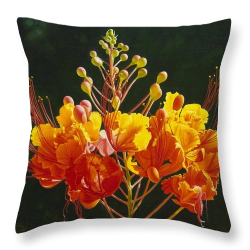 Floral Throw Pillow featuring the painting Pride Of Barbados by Gary Hernandez